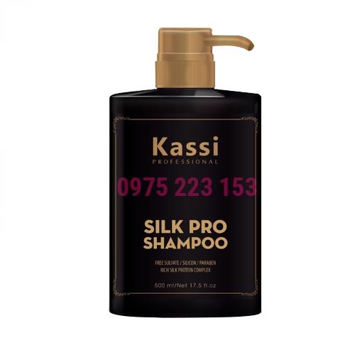 Dầu gội phục hồi tóc hư tổn Kassi Silk Pro 500ml