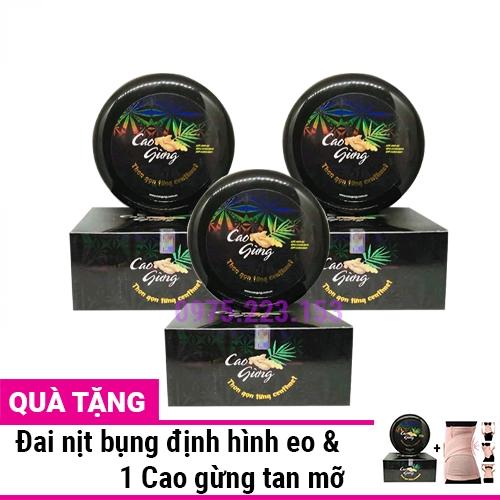 Combo 3 Hộp Cao Gừng tan mỡ Thiên Nhiên Việt